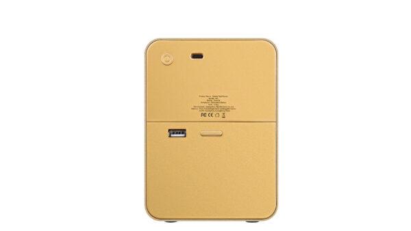 золотой принтер